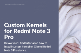 Install custom kernel on Redmi Note 3 Pro