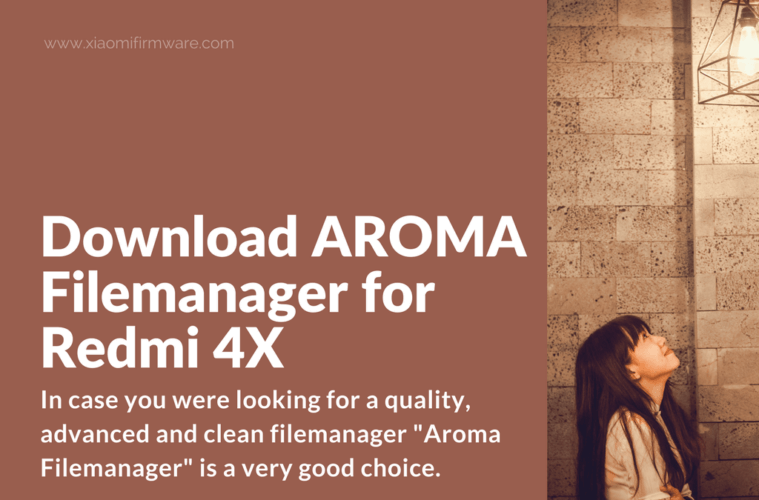 Overview of AROMA Filemanager 2.00 beta