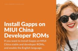 Google Applications for MIUI China Developer ROM